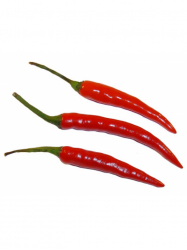 Chili paprika doboz 50 gr