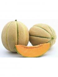 Sárgadinnye Fiata/Kantalup kg-os